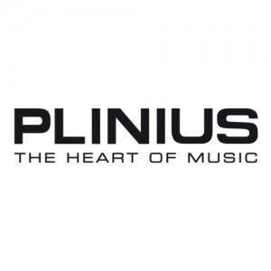 Plinius stereo systems in Saratoga Springs & Albany, NY
